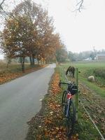 trasa rowerowa - szlak joanitów