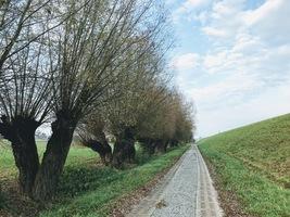 szlak Wiślanej trasy rowerowej